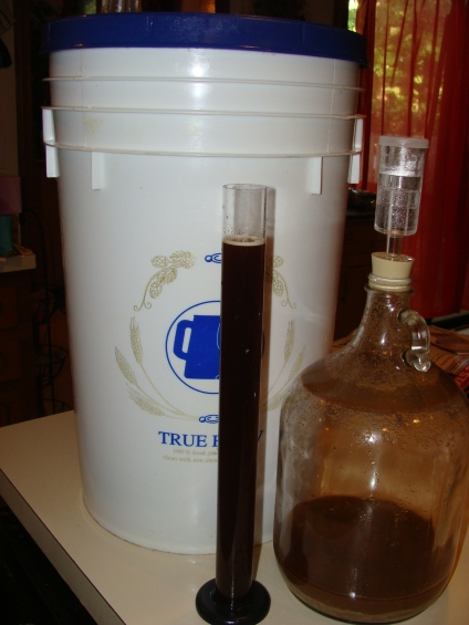 Hydrometer sample
