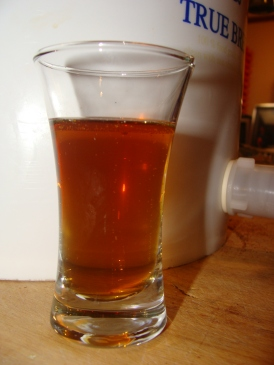 Scottish Samhain Pumpkin Ale sample.