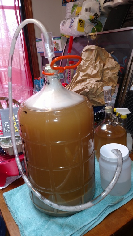 Blow-off tube...yeast is chowing down!